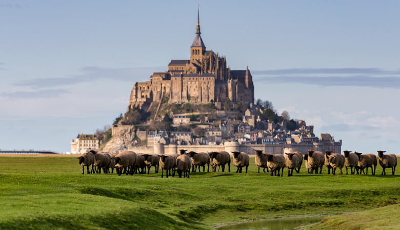 Visit the Mont Saint Michel in France